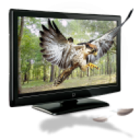 3D-Eagle-icon Работодателю - Результат поиска резюме